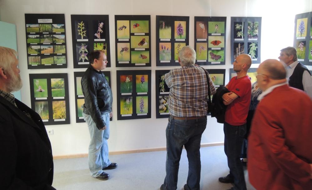Ausstellung Schmetterlinge und Orchideen Fraaß