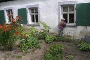 Pflanzentauschtag